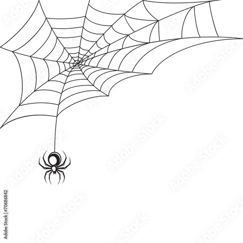 Spider web wallpaper © macrovector