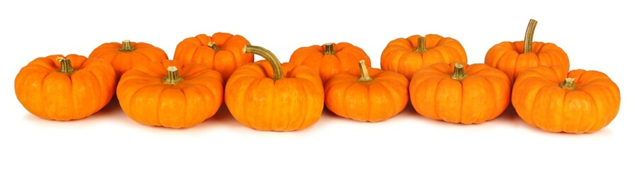 Autumn mini pumpkins forming a border over a white background