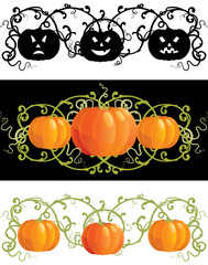 Three vector pumpkins for thanksgiving