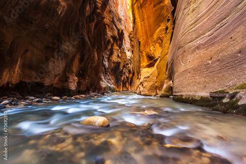 Wall street in the narrows trail, Zion national park - 70692810