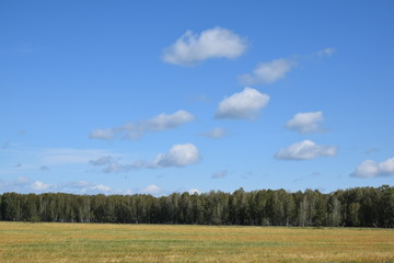 The Expanses Of Siberia-15