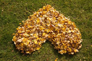 Autumnal heart in a garden