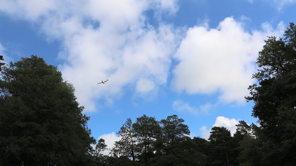 Landing airplane above trees