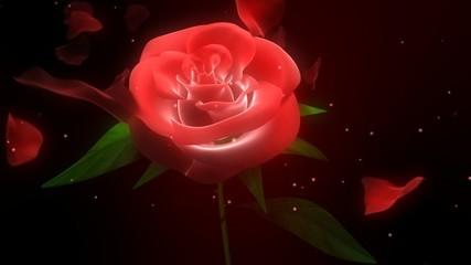 твоя  роза