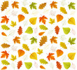 Autumn seamless vector leaf pattern