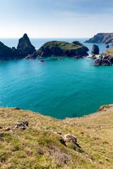 bay and rocks Kynance Cove The Lizard Cornwall England uk