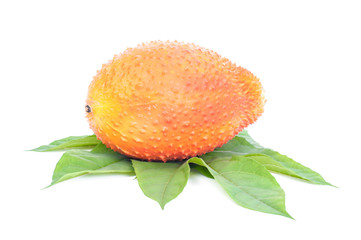 Gac fruit healthy fruit on white background.