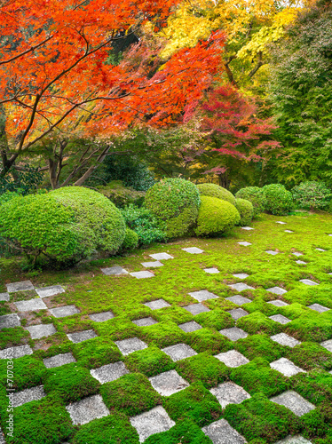 Foto op Plexiglas Japan Japanischer Garten im Herbst