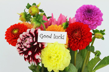 Good luck card with colorful dahlia flowers