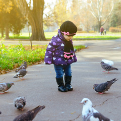 Cute baby girl feeding a pigeons at the autumn park