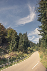 steep small road in black forest, Germany