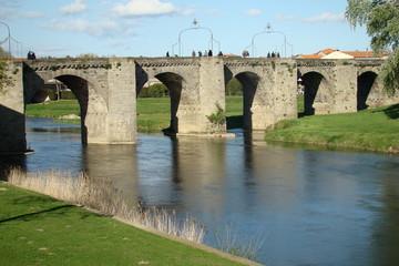 Pont vieux sur l'Aude,Carcassonne