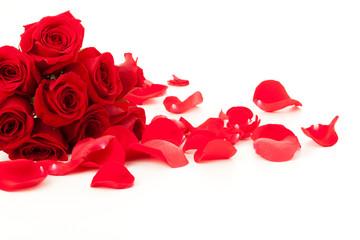 Red roses and petals