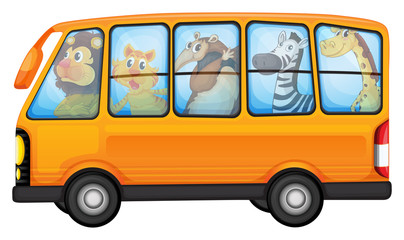 Animals and school bus