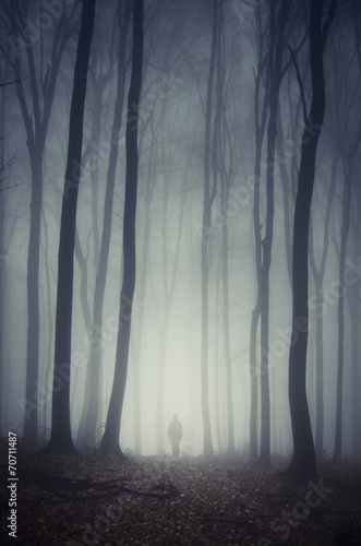 man walking on path through spooky dark forest - 70711487