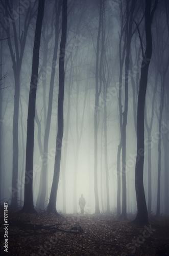 Leinwanddruck Bild man walking on path through spooky dark forest