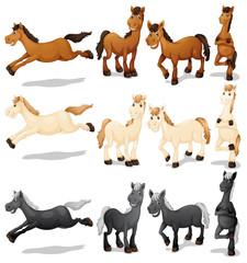 Horse set