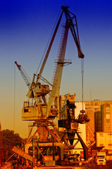 Cranes in harbour