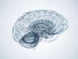 Human brain 3d - 70714064
