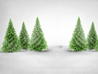 Green pine trees in snowy landscape