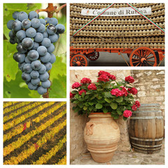 chianti wine collage, Tuscany, Italy