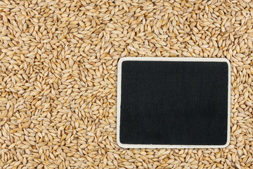 Pointer, the price tag lies on barley