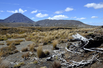 Mount Ngauruhoe landscape on Tograriro trail.