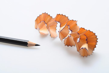 Woodchips and sharpened pencil