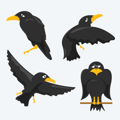 Crow Cartoons