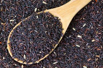 Riceberry rice (crossbred between black and white jasmine rice)