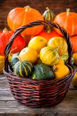 ripe organic colored pumpkins in the basket