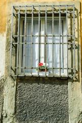 Finestra con inferiate, vaso di fiori