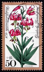Postage stamp Germany 1978 Turk's Cap Lily, Alpine Flower