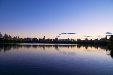 lilac central park
