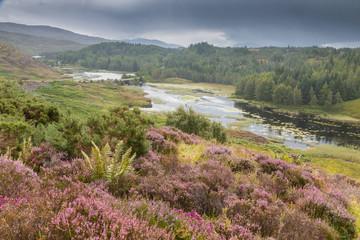 Highlands and Loch