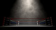 Boxing Ring Spotlit Dark - 70724684