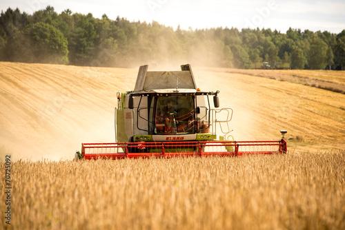 Getreideernte - 70725092