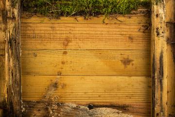 Morsche Holzbretter mit Moos
