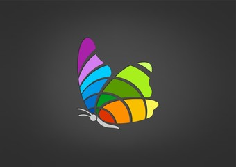 Logo Butterfly colourful Vector