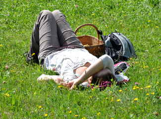 woman resting on the meadow