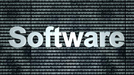 Software Entwicklung