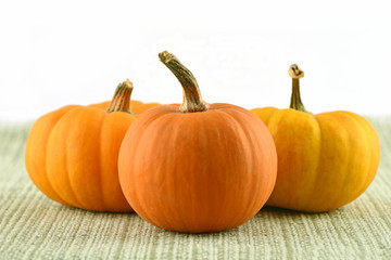 Miniature ornamental pumpkins