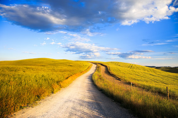Tuscany, white road on rolling hill, rural landscape, Italy, Eur