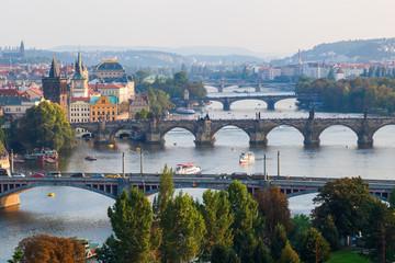 Ansicht von Prag mit Moldau und Prager Brücken