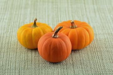 Miniature ornamental pumpkins