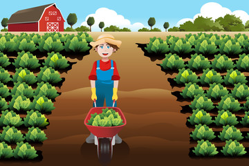 Little boy working in a vegetable farm