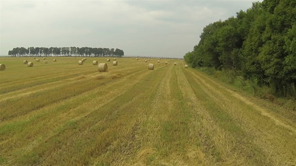Agricultural landscape with hay. Aerial  slow
