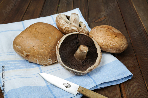 canvas print picture fresh portobello mushrooms