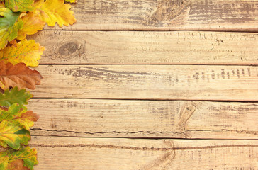 Autumn leafs on wooden board for background