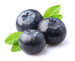 Blueberry in closeup - 70746231